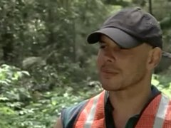 Workers in vidz the Forest  super - nial