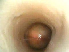 Internal Fleshlight vidz 01