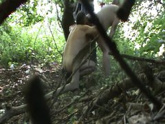 cruising...horny daddies vidz forest (spy)