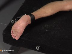 Whipping Feet vidz - Squirming  super Twink Foot Whipping BDSM Whip