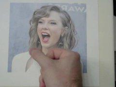 Taylor Swift vidz Tribute 6