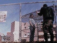Sugar - vidz Canadian hustlers  super movie (2004)