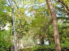 Playing in vidz public park