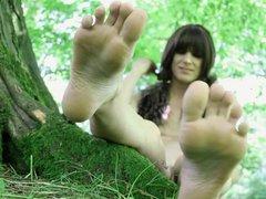 in the vidz woods 2