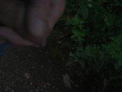 Cum in vidz Nature 2  super - Wichsen und Spritzen in der Natur