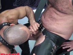 Cocksucking chubby vidz bear bareback  super pounded