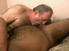 Pair of vidz Bears Fucking  super on Bed