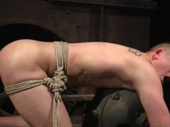 hunk tied vidz up and  super edged