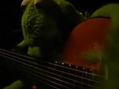 Kermit the vidz Frog takes  super drugs while singing Hurt by Johnny Cash