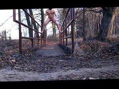 on a vidz bridge in  super the forest