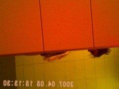gym showers vidz caught 19