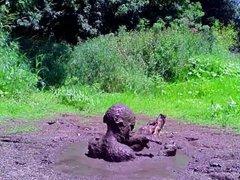 Diving in vidz Mud pit