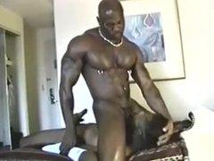 Black Couple vidz Fucking Hard