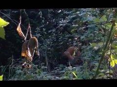 cruising...in the vidz forest pt3