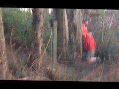 cruising...in the vidz forest