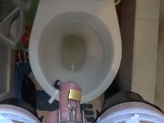 Pissing in vidz he toilet  super wearing my stockings and corset