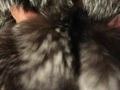 Silver fox vidz fur stroke