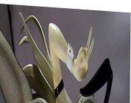 figure bukkake vidz sof(Nyaruko Bunny)part2