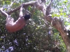 Indian Desi vidz Nude Boy  super Play With Trees In The Forest