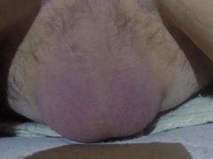 testicles activities vidz accelerated 16x.mp4