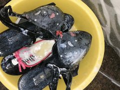 Messy Shoes vidz with Bra  super part 2
