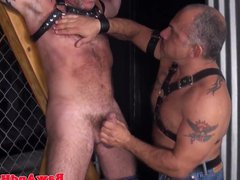 Bdsm Leather vidz bears licking  super ass in group sex