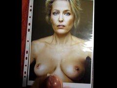 Cum On vidz Gillian Anderson  super Vol222