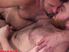 Ginger bear vidz wank cum  super for mature silver daddy