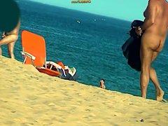 Beach Inspector vidz 31