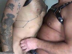 Handsome stud vidz rimming bears  super tight asshole