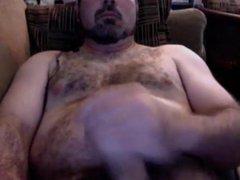 Hairy bear vidz 31018