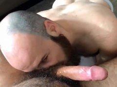 Hairy bearded vidz otter sucks  super daddy