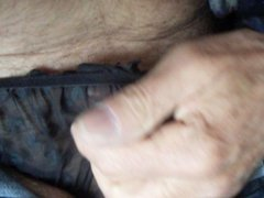 Sheer black vidz panty play